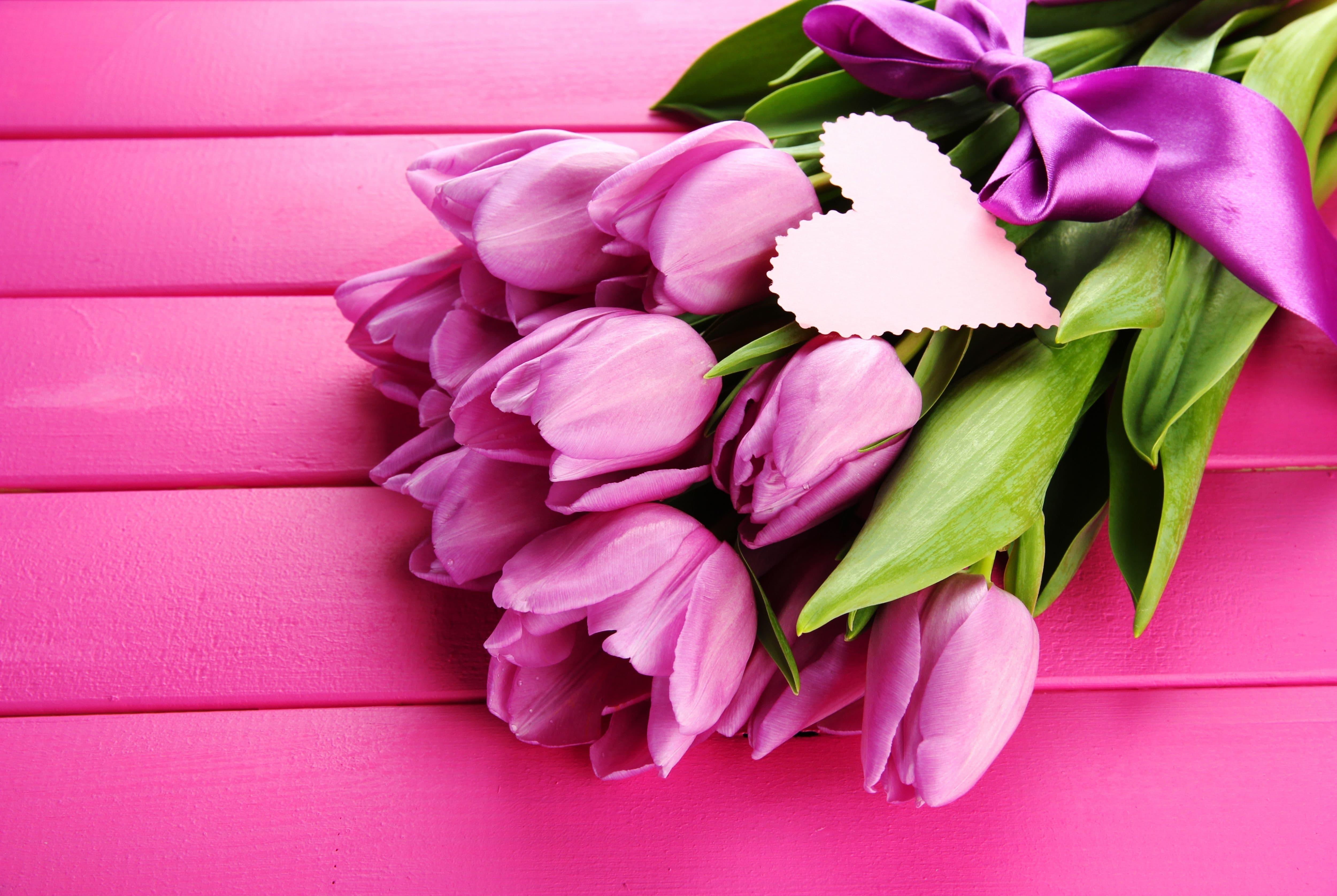 фиолетовые цветы в коробке  № 2541445  скачать